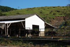 高良谷牧場
