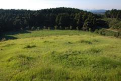 緑が広がる牧場山頂からの風景